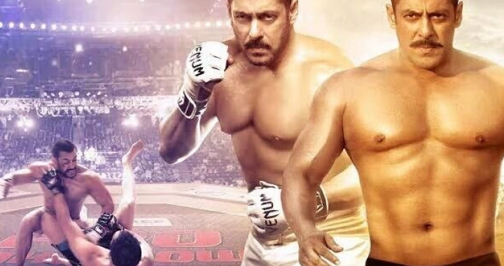 Movie Review: SULTAN (2016) - A By The Numbers Underdog Story